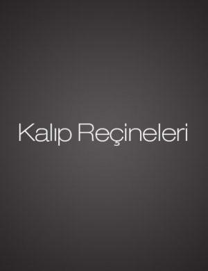 Kalip_Recineleri